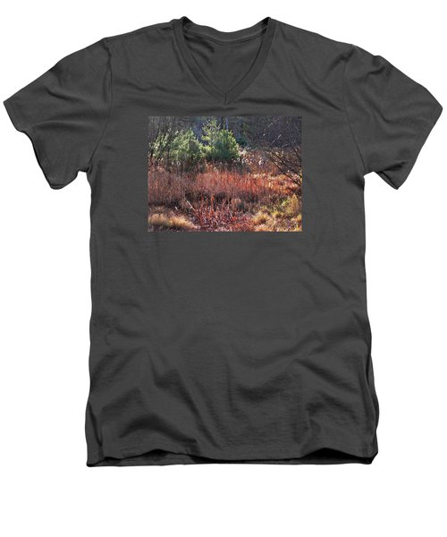 Shimmering Sunlight On The Cattails Men's V-Neck T-Shirt by Joy Nichols