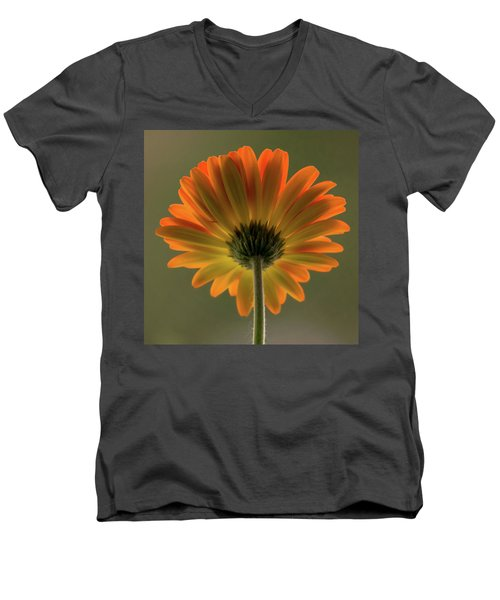 Shine Bright Gerber Daisy Square Men's V-Neck T-Shirt by Terry DeLuco