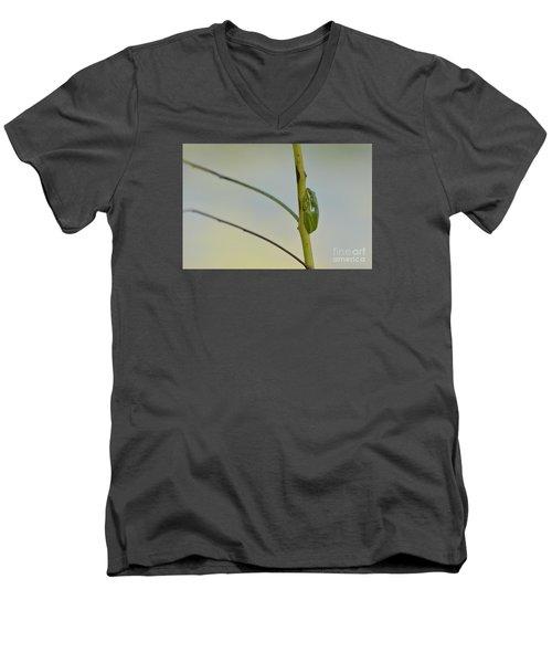 Doris Day Shining Bright Men's V-Neck T-Shirt by Kathy Gibbons