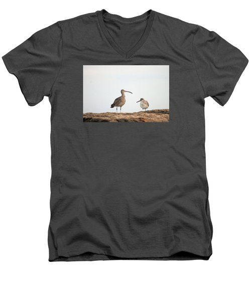 Shorebirds Of Windansea Beach Men's V-Neck T-Shirt by Bruce Patrick Smith