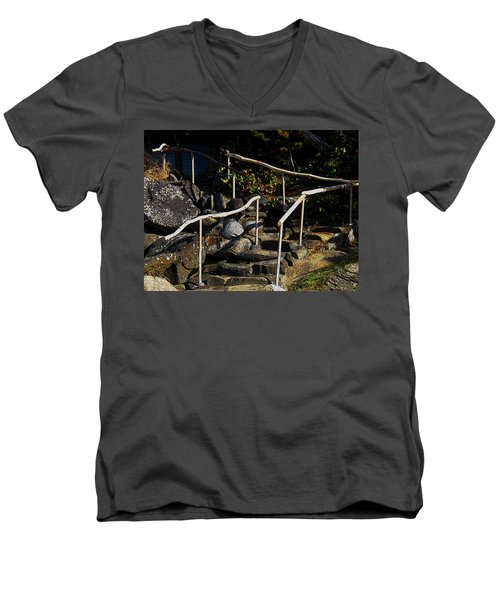 Shoreline Steps  Men's V-Neck T-Shirt by Anne Havard