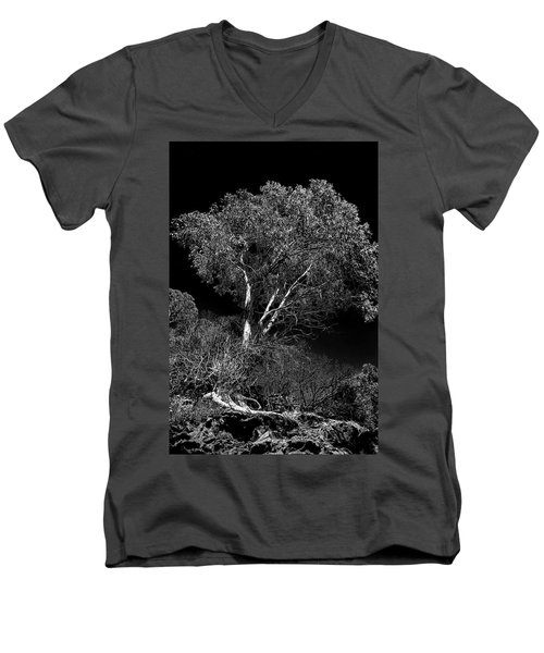 Shoreline Tree Men's V-Neck T-Shirt by Roger Mullenhour