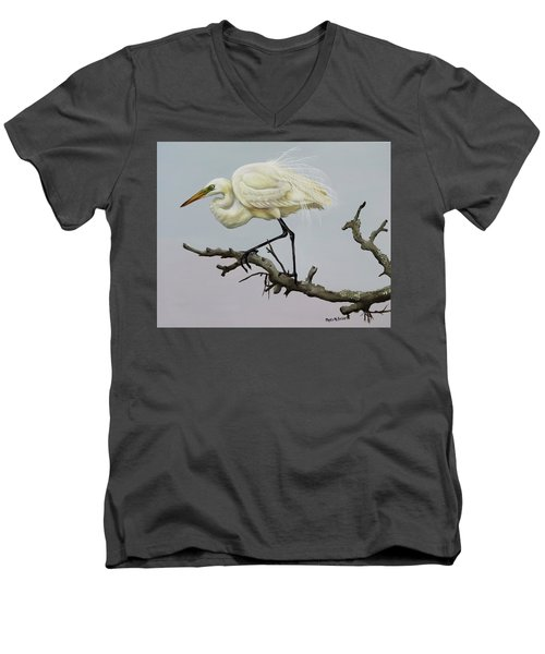 Show Off Men's V-Neck T-Shirt