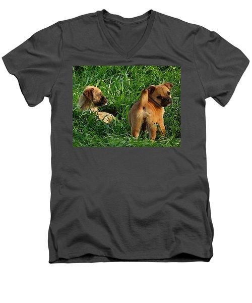 Showing Her Mutt. Men's V-Neck T-Shirt