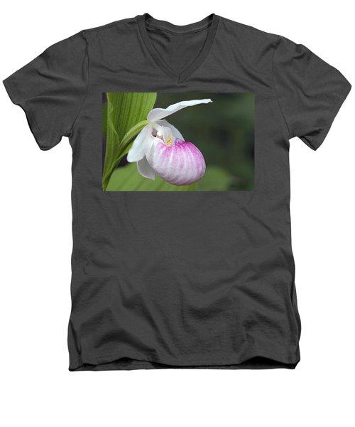 Showy Ladyslipper Men's V-Neck T-Shirt