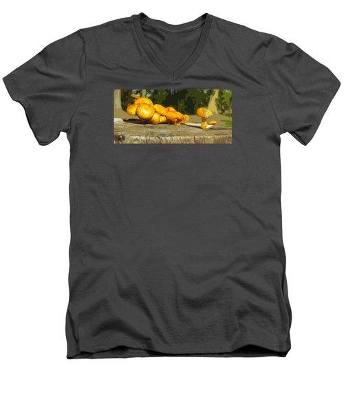 Shrooms On A Stump Men's V-Neck T-Shirt