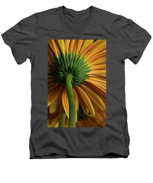 Shy Daisies Men's V-Neck T-Shirt