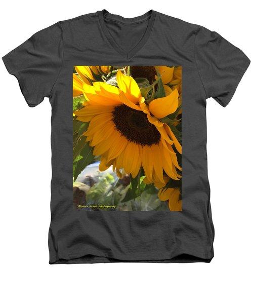 Shy Sunflower Men's V-Neck T-Shirt