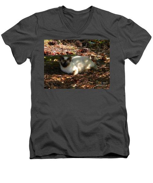 Siamese Sweetie Men's V-Neck T-Shirt