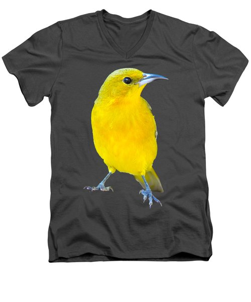 Silver And Gold Men's V-Neck T-Shirt