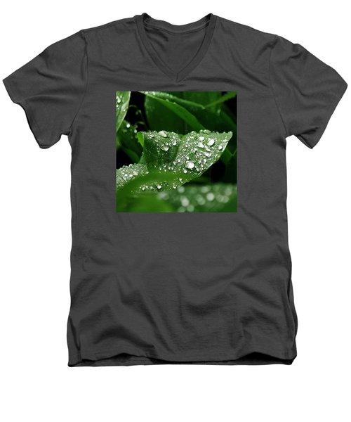 Silver Drops Of Spring Men's V-Neck T-Shirt by Al Fritz