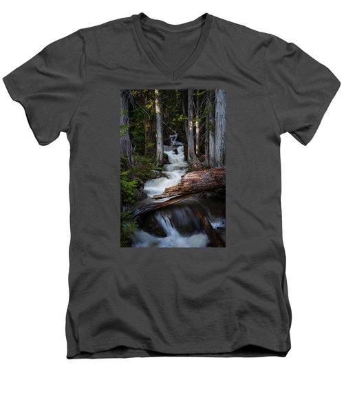 Silver Falls Men's V-Neck T-Shirt