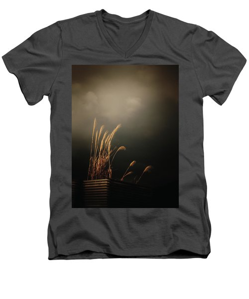 Silver Grass Men's V-Neck T-Shirt