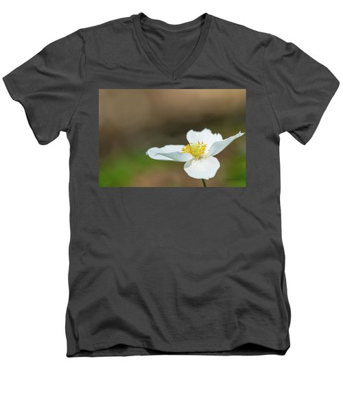 Simple Beauty Men's V-Neck T-Shirt