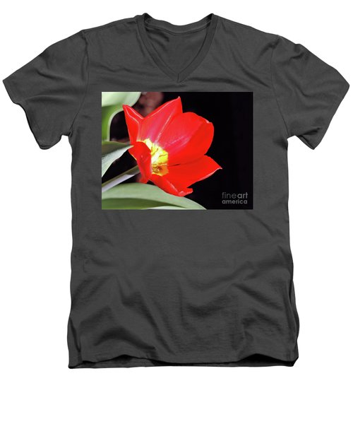 Simply Spring Men's V-Neck T-Shirt