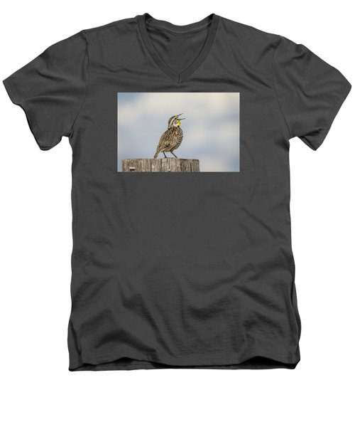 Singing A Song Men's V-Neck T-Shirt by Thomas Young