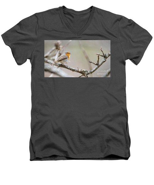Singing Robin Men's V-Neck T-Shirt by Torbjorn Swenelius