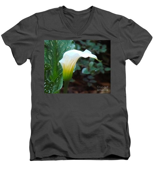 Single Lily  Men's V-Neck T-Shirt by Rand Herron
