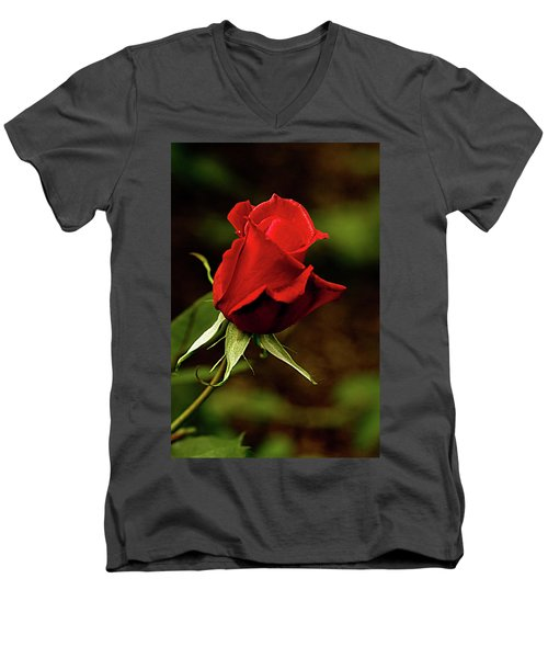 Single Red Rose Bud Men's V-Neck T-Shirt by Jacqi Elmslie