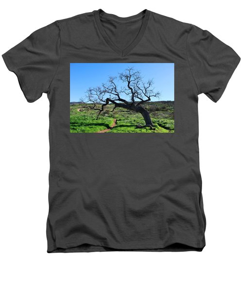 Single Tree Over Narrow Path Men's V-Neck T-Shirt