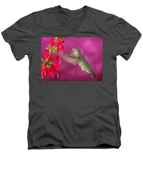 Sipping At The Salvia Men's V-Neck T-Shirt
