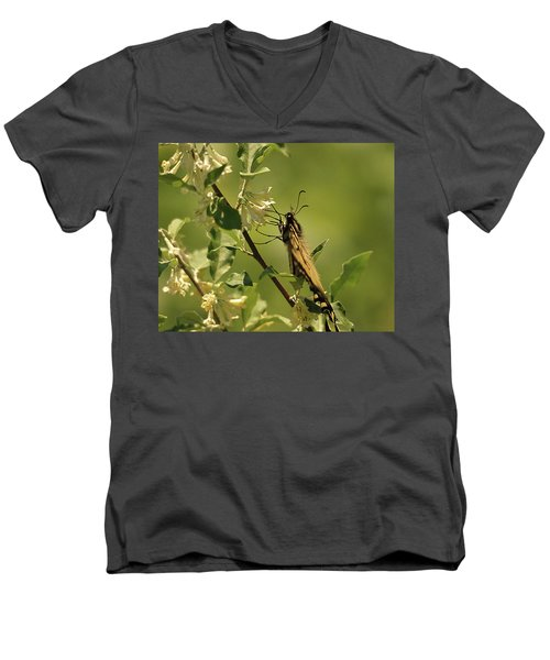 Men's V-Neck T-Shirt featuring the photograph Sipping In The Shade by Susan Capuano
