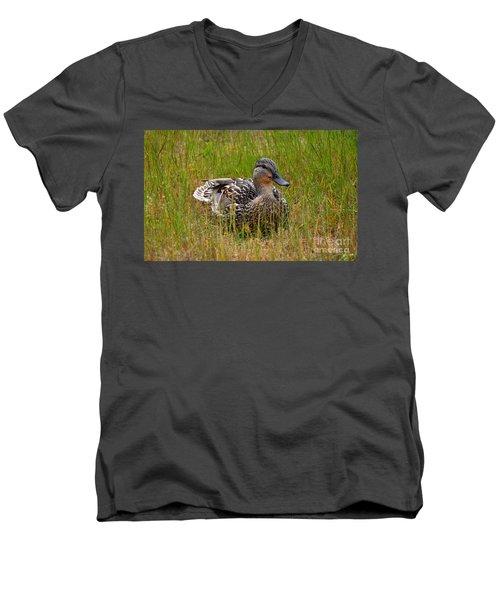 Sitting Duck Men's V-Neck T-Shirt