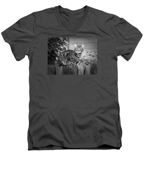 Sitting On The Fence Men's V-Neck T-Shirt