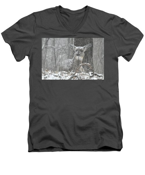 Sitting Out The Storm Men's V-Neck T-Shirt by Michael Peychich