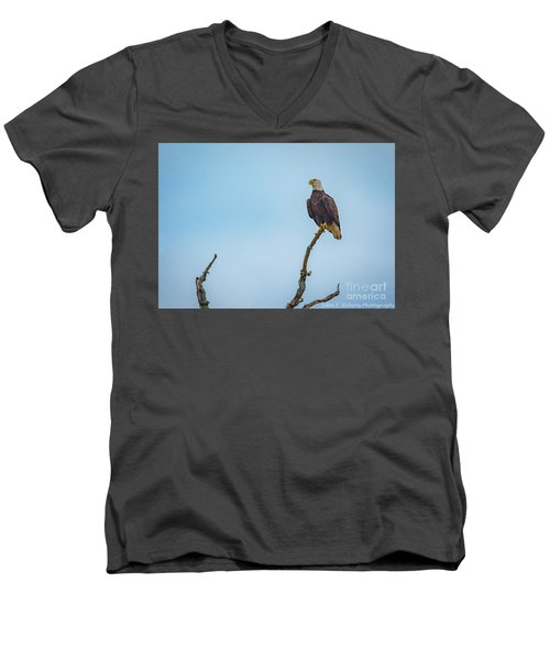 Sitting Patiently Men's V-Neck T-Shirt