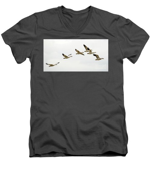 Men's V-Neck T-Shirt featuring the photograph Six Snowgeese Flying by Mike Dawson