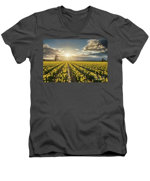 Men's V-Neck T-Shirt featuring the photograph Skagit Daffodils Bright Sunstar Dusk by Mike Reid