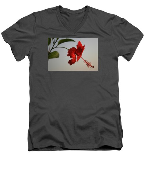 Skc 0450 Vibrant Hibiscus Men's V-Neck T-Shirt