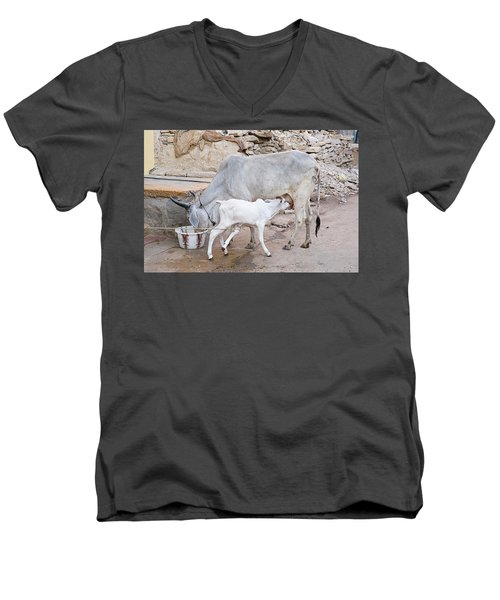 Skn 1654 Feeding Time Men's V-Neck T-Shirt by Sunil Kapadia