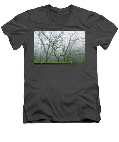 Skn 3720 Monsoon Landscape Men's V-Neck T-Shirt