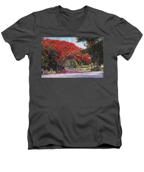 Skyline Drive Men's V-Neck T-Shirt