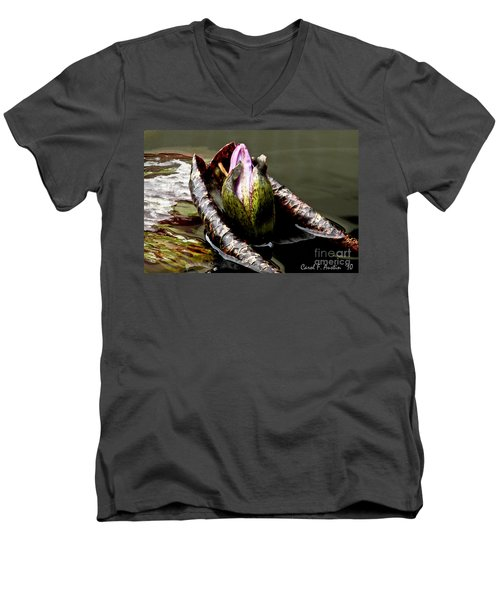 Sleeping Beauty In Water Lily Pond Men's V-Neck T-Shirt by Carol F Austin