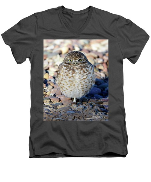 Sleepy Burrowing Owl Men's V-Neck T-Shirt