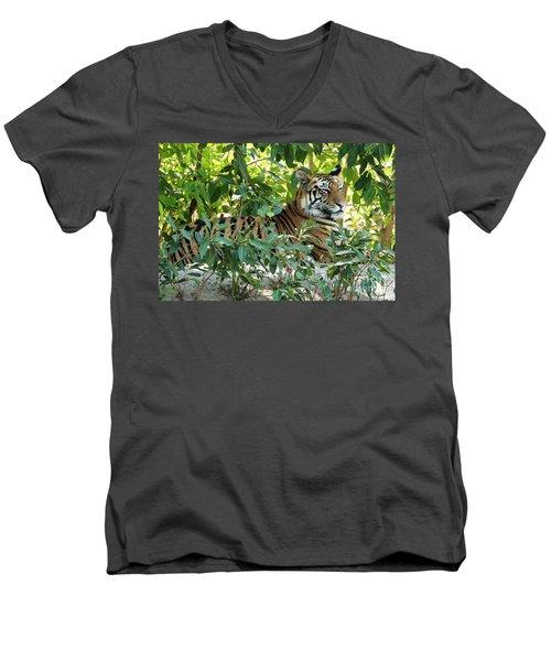 Sleepy Cat Men's V-Neck T-Shirt by Pravine Chester