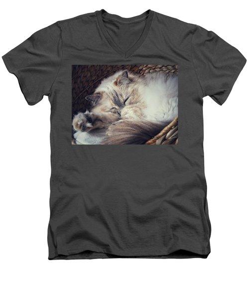 Sleepy Kitty Men's V-Neck T-Shirt by Karen Stahlros