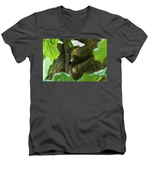 Sloth Sleeping Men's V-Neck T-Shirt