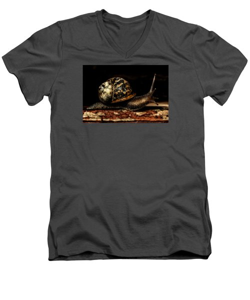 Slow Mover Men's V-Neck T-Shirt