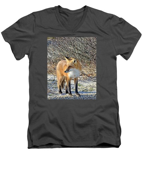 Men's V-Neck T-Shirt featuring the photograph Sly Little Fox by Sami Martin