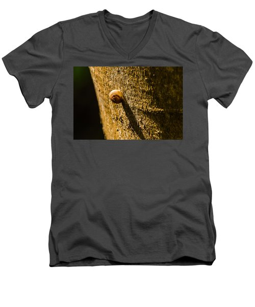 Small Snail On The Tree Men's V-Neck T-Shirt