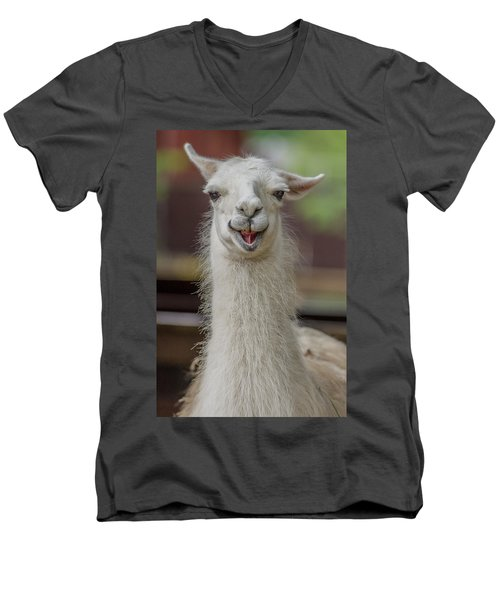 Smiling Alpaca Men's V-Neck T-Shirt