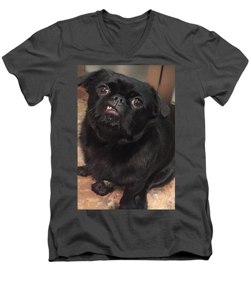 Men's V-Neck T-Shirt featuring the photograph Smiling For Treats by Paula Brown