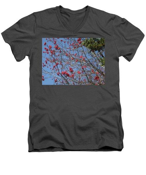 Smokies 8 Men's V-Neck T-Shirt by Val Oconnor
