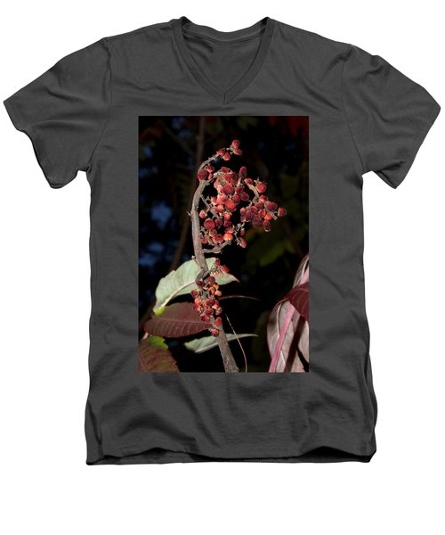 Smooth Sumac Flower Men's V-Neck T-Shirt