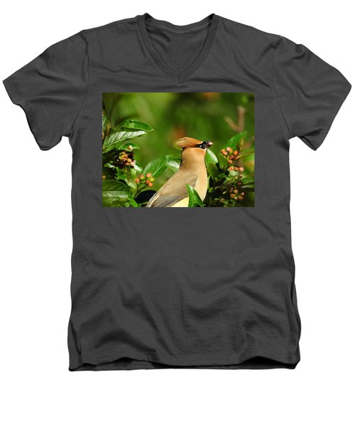 Men's V-Neck T-Shirt featuring the photograph Snacking by Betty-Anne McDonald