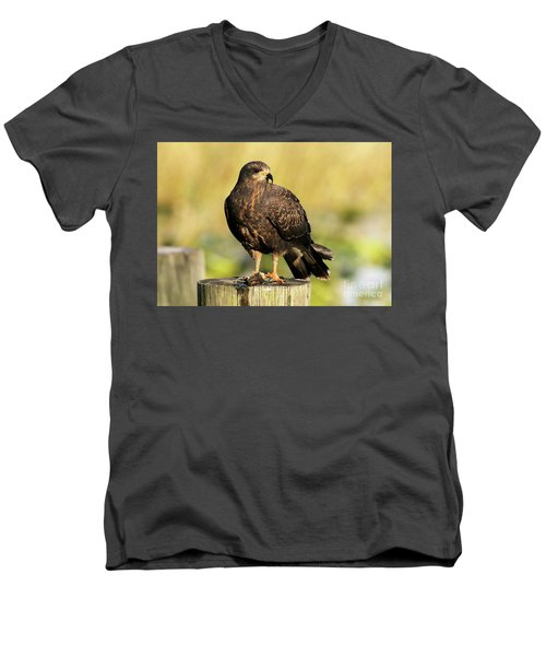 Snail Kite With A Snack Men's V-Neck T-Shirt